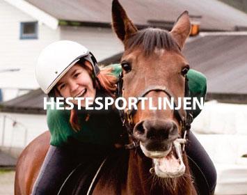Hestesportlinjen